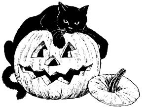 black_cat_pumpkin